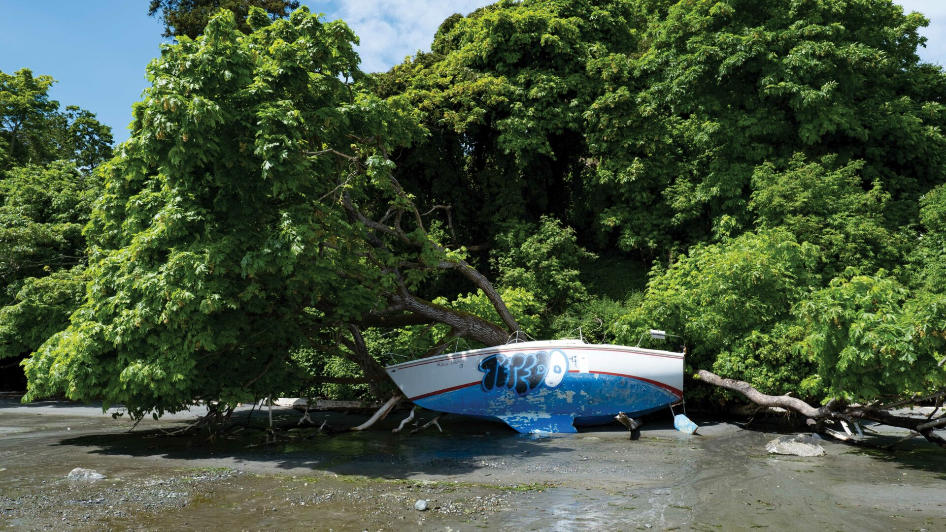 All it takes is one big spring storm, and beaches up and down the coast will see abandoned boats washing ashore. Photo by KK Law.